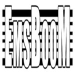 Cropped Emsboom Logo